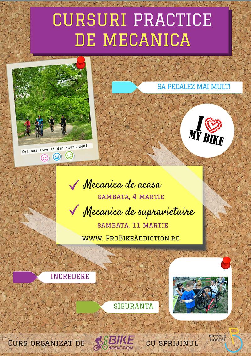 PROBIKEADDICTION MECANICA DE SUPRAVIETUIRE